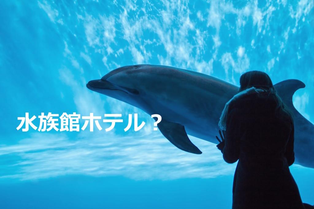 f:id:shinpsonkun:20180524011106j:plain